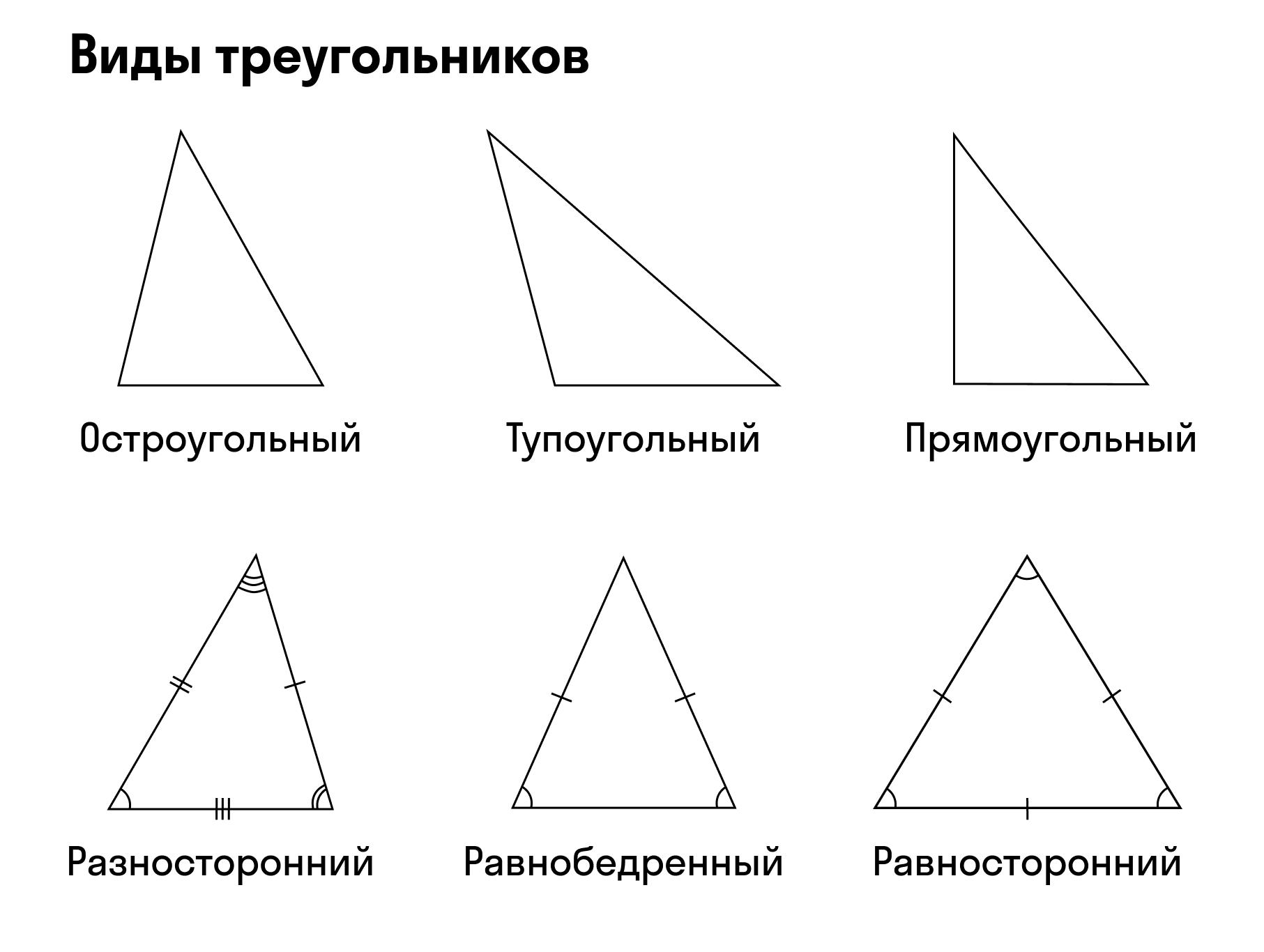 Виды треугольника