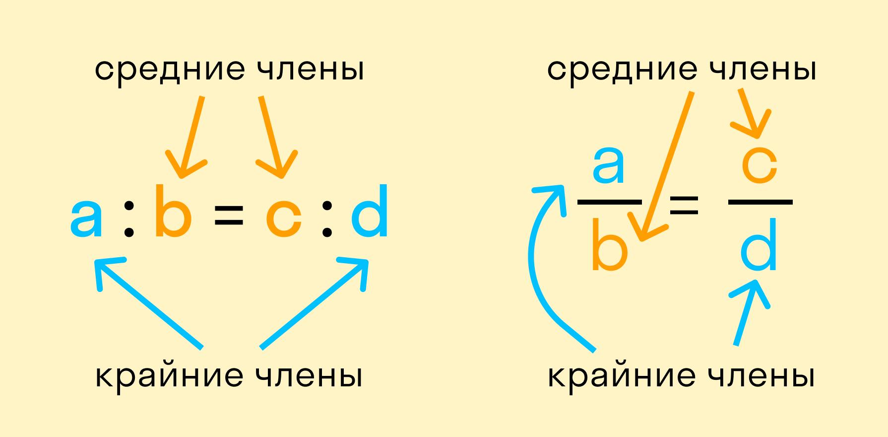 Компоненты пропорций