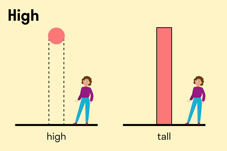 наглядный пример отличия tall и hight