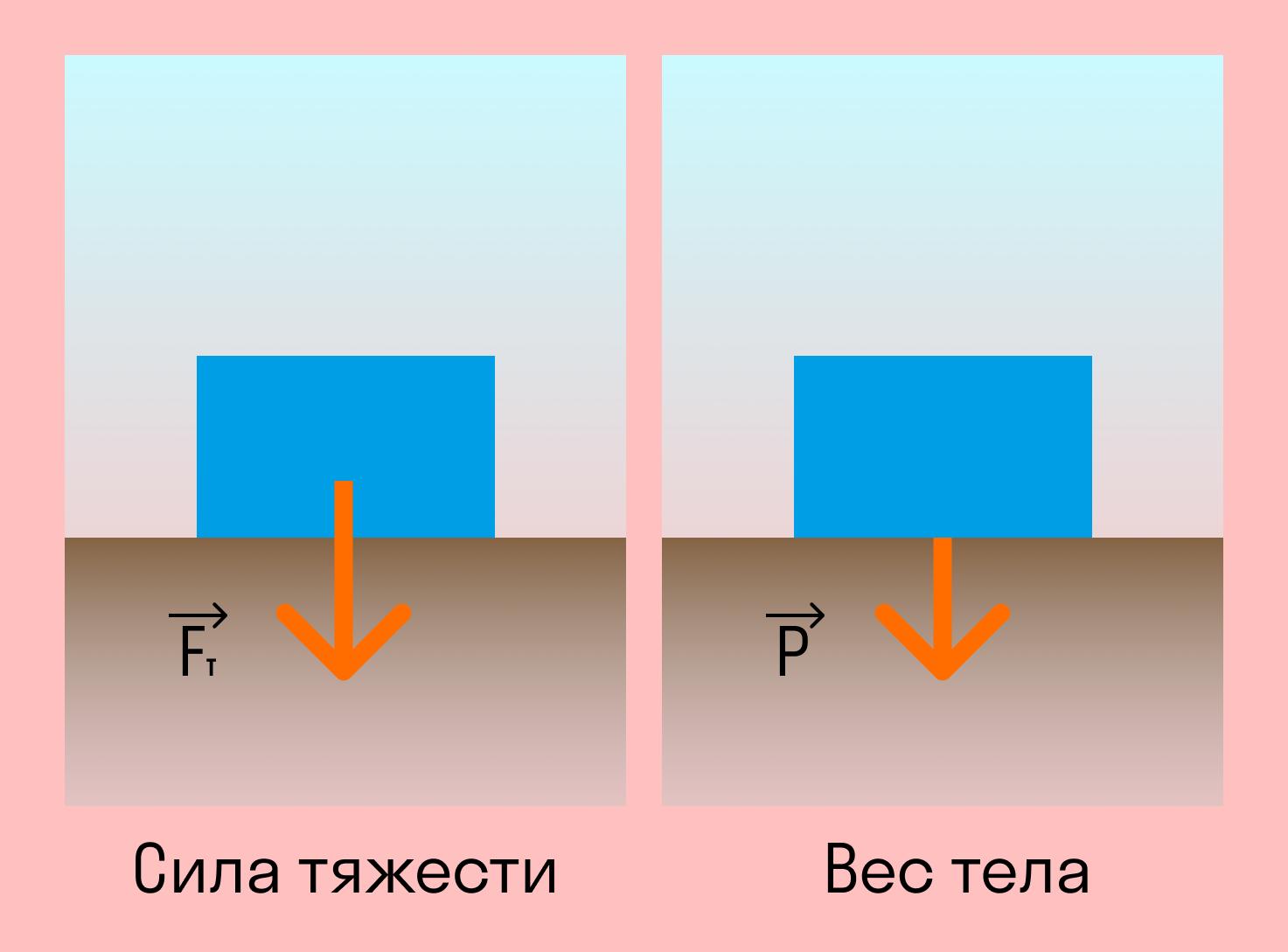 формула сила тяжести и вес тела