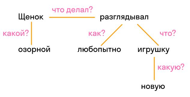 члены предложения